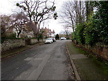 SO6024 : South along Ryefield Road, Ross-on-Wye by Jaggery