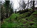 H4869 : Sloping ground, Camowen by Kenneth  Allen