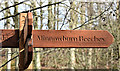 J3268 : Wooden finger-post sign, Minnowburn, Belfast - March 2017(2) by Albert Bridge