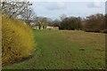SD8331 : Green Space beside Sep Clough by Chris Heaton