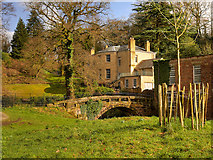 SJ8383 : Stone Footbridge and Quarry Bank House by David Dixon