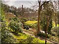 SJ8383 : The Mill View by David Dixon