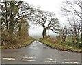 ST4934 : Westfield Lane by Roger Cornfoot