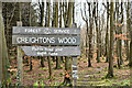 J4278 : Creighton's Wood, Ballymenagh, Holywood (March 2017) by Albert Bridge