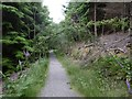 NH4823 : New looking path, Ruskich Wood by Richard Webb