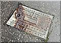 J2764 : Tyrrell access cover, Lisburn (March 2017) by Albert Bridge