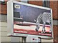 J3373 : Zebra digital advertising, Belfast (March 2017) by Albert Bridge