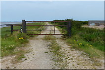 TA0623 : Gate and track along the River Humber by Mat Fascione