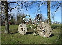 ST7734 : Ebenezer's Bike, Stourhead by Des Blenkinsopp