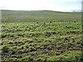 NZ1512 : Farmland, south of Greenless Lane by Christine Johnstone