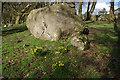 SD4974 : Limestone boulder, Leighton Park by Ian Taylor