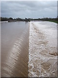 SX9291 : The Side Weir of Trew's Weir Flood Relief Channel by Brian Henley