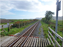 SH6041 : Welsh Highland Railway south of level crossing 54.67 by Robin Webster