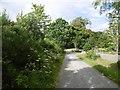 NH5141 : Lane, Tomnacross by Richard Webb