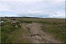 NT6578 : Path, Belhaven Bay by Richard Webb