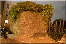 SX4853 : Remains of Plymouth Castle by N Chadwick