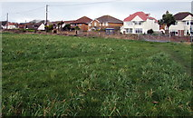 SS8178 : Eastern end of a long field, Nottage, Porthcawl by Jaggery