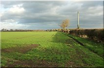 SE3664 : Field and boundary, Newfields Farm by Derek Harper