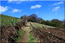 SE1028 : Cowling Lane by Chris Heaton