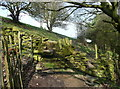 SE1309 : Stile on Holmfirth FP58/4, Netherthong by Humphrey Bolton