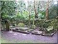 ST8477 : Castle Combe [16] - graveyard (2) by Michael Dibb