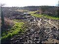 NU1429 : Mud, mud, glorious mud by James Allan