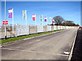 TG1505 : Flags beside Baker Drive by Evelyn Simak