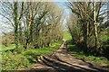 SX1653 : Drive to Lanlawren by Derek Harper