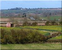 SP7190 : Farmland north of the Grand Union Canal by Mat Fascione