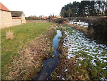 SK9224 : Stream, Woolsthorpe Manor by Hamish Griffin