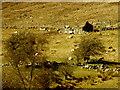 H1132 : Ruined dwelling, Legnabrothy by Kenneth  Allen