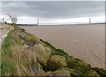 TA0025 : The Humber foreshore at North Ferriby by Graham Hogg