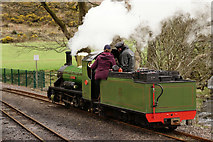 NY1700 : Running Around at Dalegarth by Peter Trimming