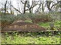 ST6670 : Dramway hump by Neil Owen