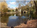 TL8782 : River Little Ouse, Thetford by Hamish Griffin