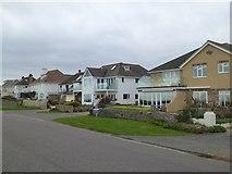 SZ2492 : Houses on Marine Drive East, Barton on Sea by David Smith