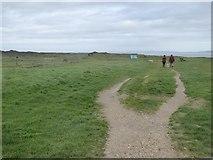 SZ2492 : Path on the clifftop, Barton on Sea by David Smith
