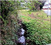 ST2896 : Nant Celyn, West Pontnewydd, Cwmbran by Jaggery