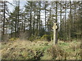 SE7994 : Mauley Cross near Stape by Jonathan Thacker