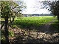 TQ3436 : Buildings at Burleigh Oaks Farm seen from footpath by Shazz