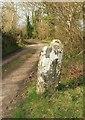 SX7488 : Guidepost near Cranbrook by Derek Harper