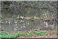 TQ5840 : Sandstone Cliff by N Chadwick