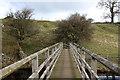 NY9813 : Footbridge over The River Greta by Chris Heaton