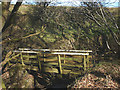 SD6564 : Wooden footbridge, Bull Gill by Karl and Ali
