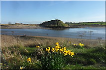 NU2410 : Aln Estuary and Church Hill, Alnmouth by Anthony Foster