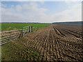 TL8379 : Arable fields by Hugh Venables