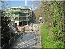SU4828 : Former Didcot Newbury & Southampton railway line in Winchester by Nigel Thompson