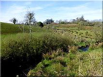 H3063 : Small stream, Carnalea by Kenneth  Allen