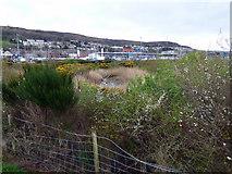NS3174 : Man made lagoon at Port Glasgow by Thomas Nugent