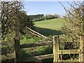 SJ8051 : Stile and field off Cross Lane near Audley by Jonathan Hutchins